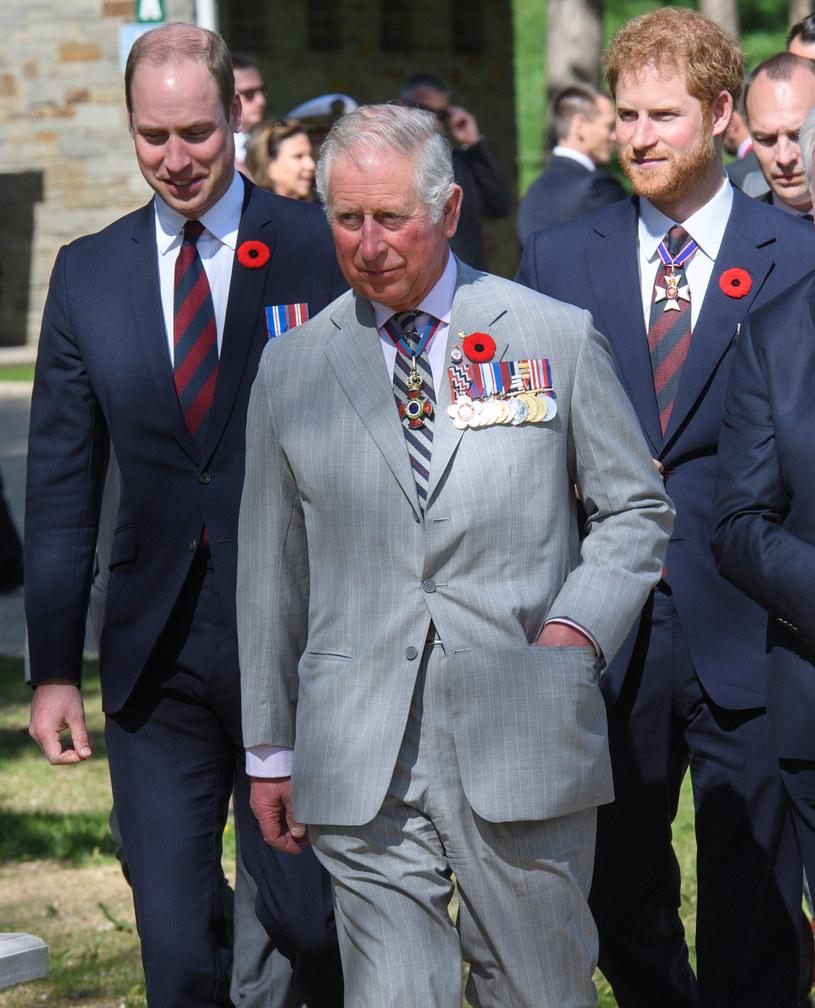 Książę William, książę Karol i Harry /Pool / Samir Hussein /Getty Images