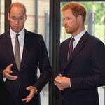 Książę William ma już dość Harry'ego! Poszło o jego wywiady!