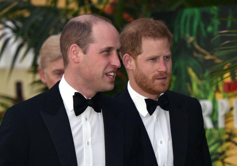 """Książę William z bratem na premierze serialu """"Our Planet"""" w 2019 roku /CapitalPictures/face to face /Reporter"""