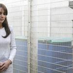 Księżna Kate odbyła sekretną wizytę. Dlaczego ją ukrywano?