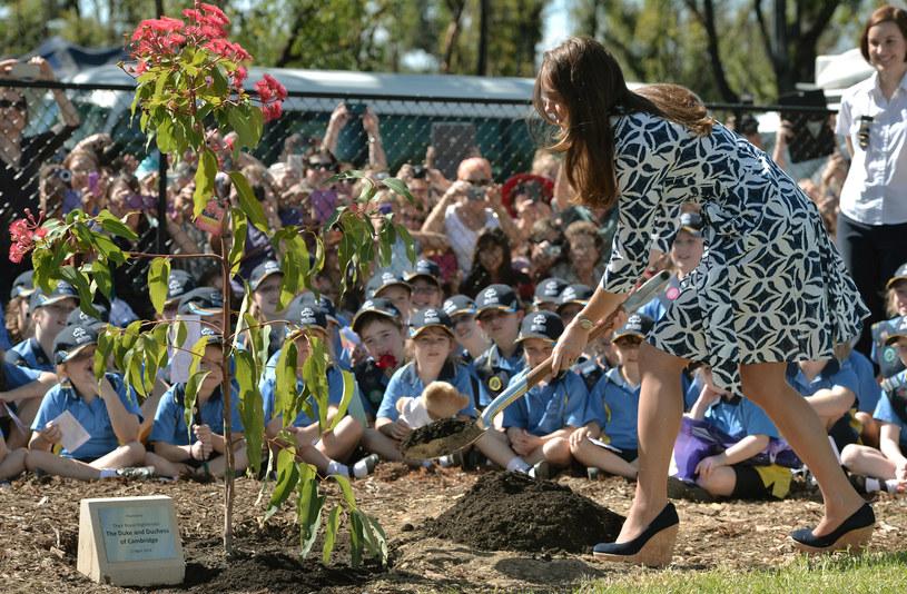 Księżna Kate uwielbia buty na koturnie oraz obuwie sportowe. Jeżeli jest zapraszana na eventy do szkół decyduje się na jeden z dwóch modeli /Getty Images