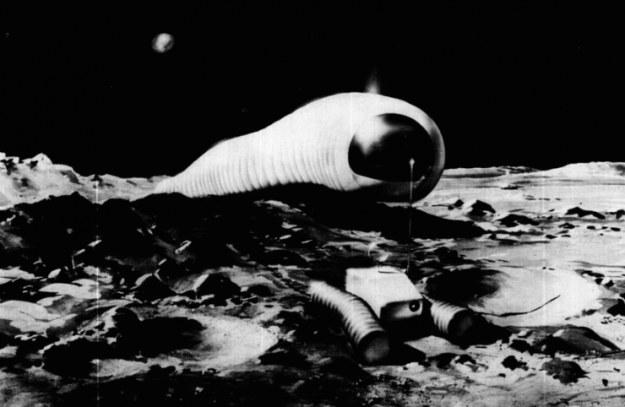 """""""Księżycowa larwa"""" - wizualizacja /NASA"""
