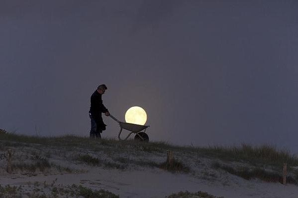 Księżycowy ogrodnik... /Laurent Laveder/CATERS NEWS /Agencja FORUM