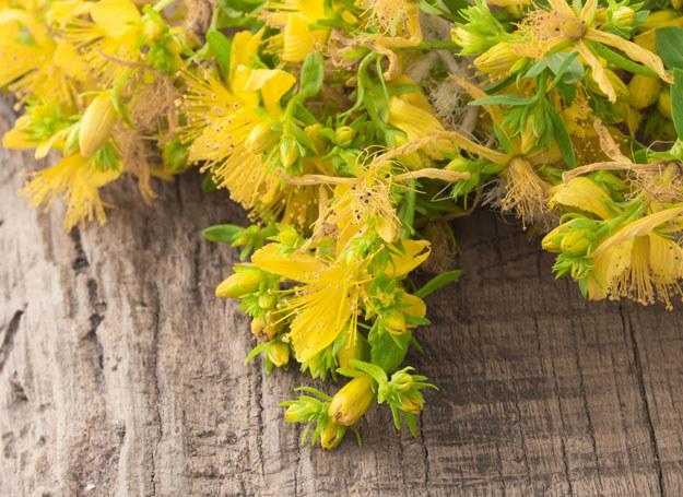 Kto by pomyślał, że w porastających łąki żółtych kwiatkach kryje się substancja, która może korzystnie wpływać na nasz mózg /123RF/PICSEL