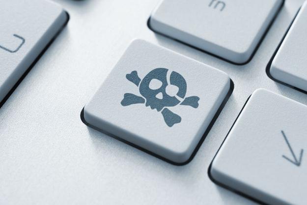 Kto oprócz prawników zarabia na łamaniu prawa w sieci? /©123RF/PICSEL