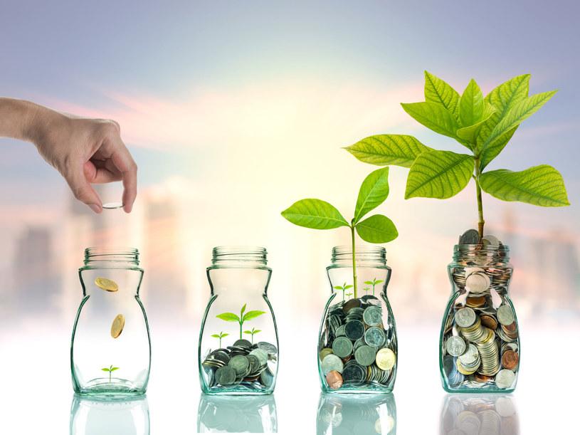 Kto zapłaci za wcześniejsze emerytury? /123RF/PICSEL