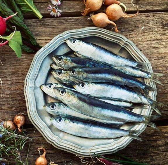 Które gatunki ryb zalicza się do niebieskich? /©123RF/PICSEL