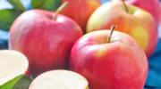 Które produkty pobudzają, a które hamują apetyt?
