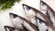 Które ryby są najzdrowsze?
