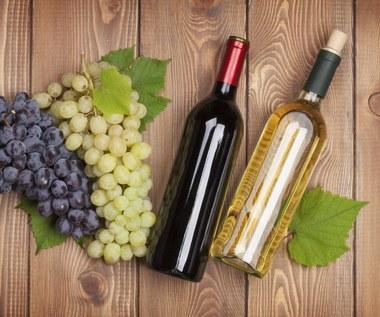 Które wino wybrać: białe czy czerwone?