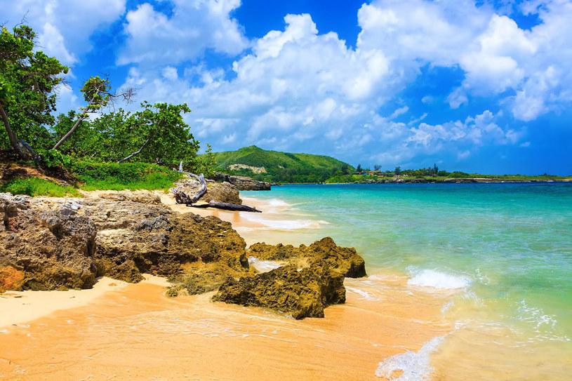 Kuba jest wymarzonym miejscem beztroskiego wypoczynku na brzegu piaszczystej plaży /123RF/PICSEL