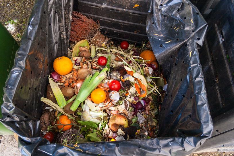 Kuchnia to miejsce, w którym marnujemy najwięcej - do śmieci trafia prawie 1.5 miliarda ton żywności /123RF/PICSEL