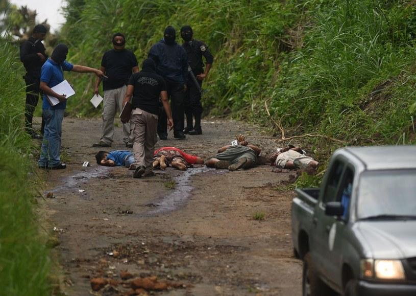 Kule gangu dorwą każdego zdrajcę. Mara salvatrucha nie przebacza /AFP