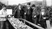 Kulinarna katastrofa, czyli europejska historia... ziemniaka