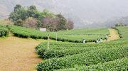 Kultura, rzemiosło i uprawy Rwandy