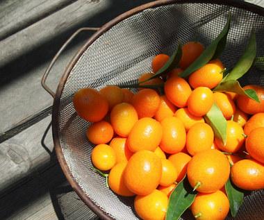 Kumkwat - pięć niezwykłych korzyści z jedzenia tego owocu