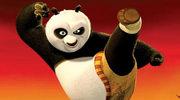 """Kung Fu Panda"" skopała robota"