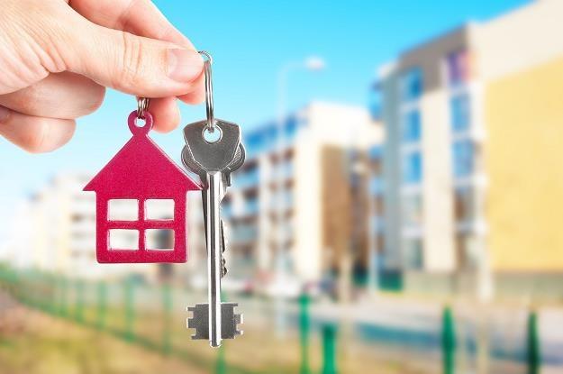 Kupujesz mieszkanie od dewelopera? Zapytaj, kto usunie usterki /©123RF/PICSEL