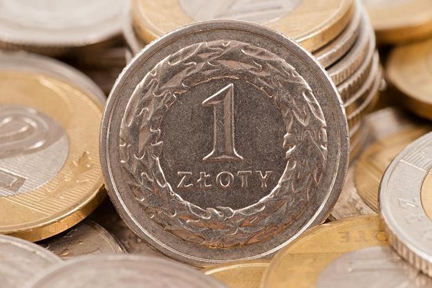 Kurs złotego jest wyjątkowo stabilny wobec franka szwajcarskiego czy dolara /©123RF/PICSEL