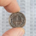 Kursy walut. Co dalej z notowaniami złotego?