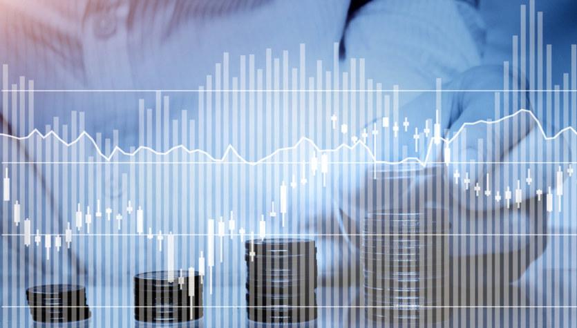 Kursy walut: Czeka nas efekt gapowicza