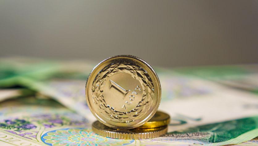 Kursy walut: Ile zapłacimy za euro?