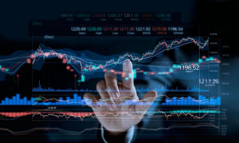Kursy walut pogłębiają zniżki (zdj. ilustracyjne) /123RF/PICSEL