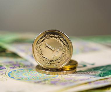 Kursy walut: Polska waluta narażona na korektę