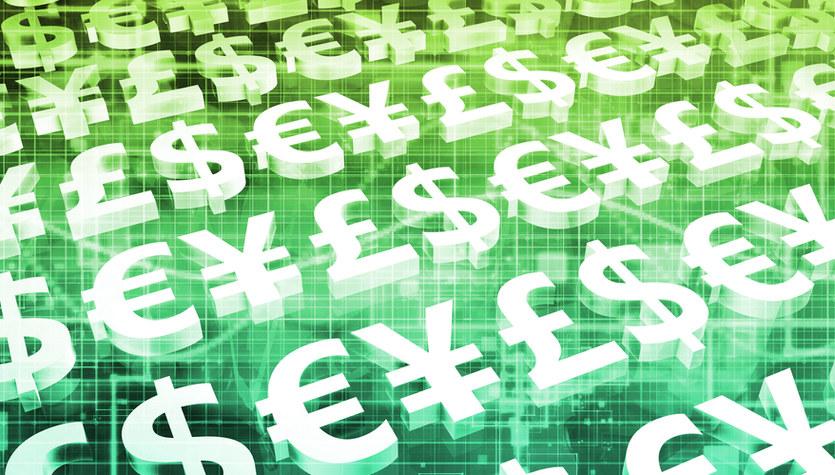 Kursy walut rosną po decyzji RPP: Euro, dolar i frank najdroższe od tygodnia