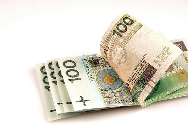 Kursy walut względem złotego zejdą dzisiaj na niższe poziomy /© Bauer