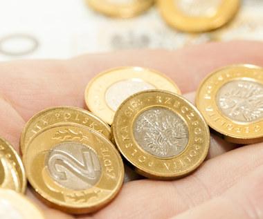 Kursy walut: Złoty bez zmian, eurodolar wyżej przed EBC