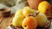Kwaszone jabłka z jarzębiną