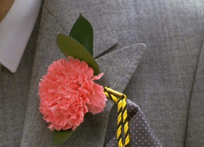 Kwiat w butonierce /Getty Images/Flash Press Media