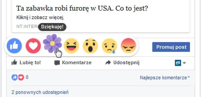 """""""Kwiatek"""" - reakcja wprowadzona przez Facebooka z okazji Dnia Matki /INTERIA.PL"""