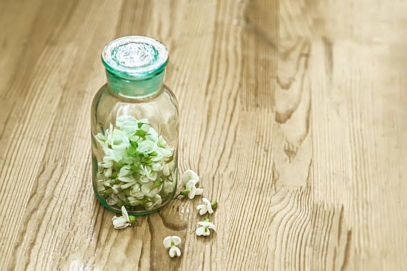 Kwiaty akacji /©123RF/PICSEL