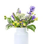 Kwiaty o właściwościach leczniczych i ich działanie