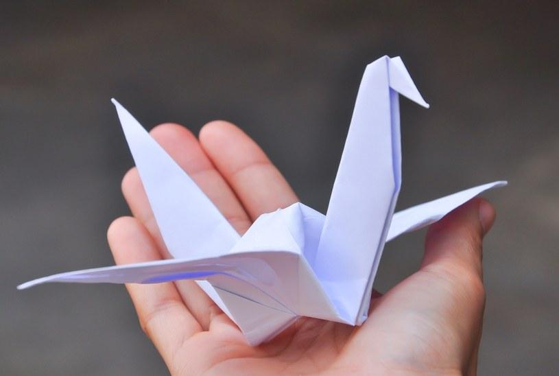 Łabędzie też zrobisz z papieru /©123RF/PICSEL