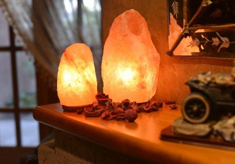 lampa himalajska /© Photogenica