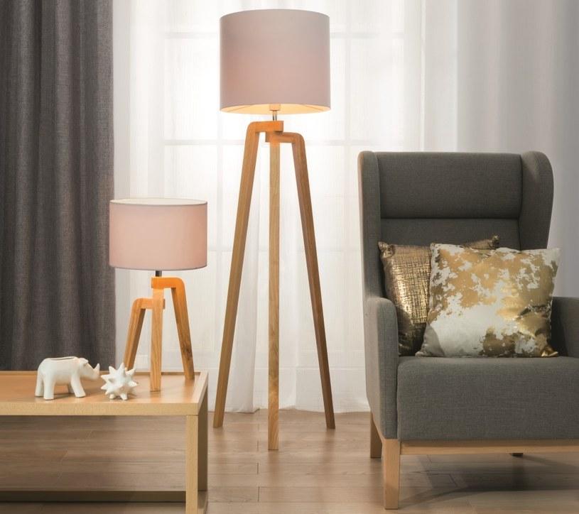 Lampa podłogowa postawiona tuż obok fotela, stworzą idealne warunki do lektury książki /materiały prasowe