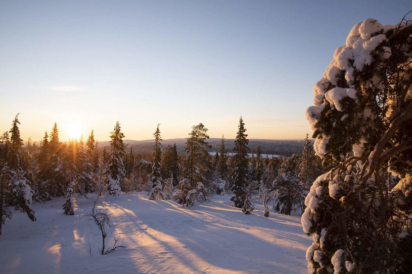 Laponia /AFP