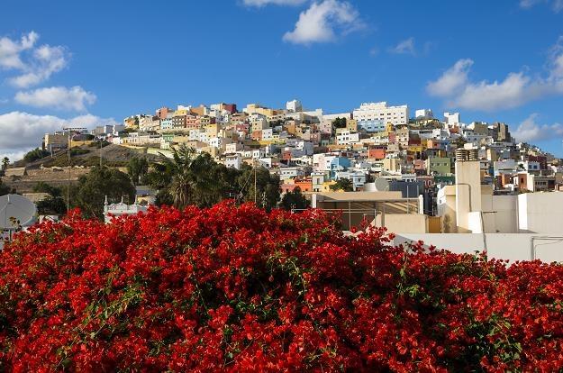 Las Palmas de Gran Canaria /©123RF/PICSEL
