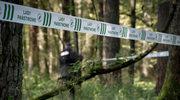 Lasy Państwowe odpowiadają na alarm ekologów