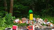 Lasy pełne śmieci: To groźne dla nas wszystkich