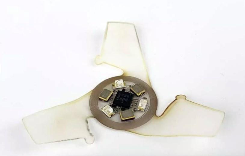 Latający mikrochip w powiększeniu /materiały prasowe