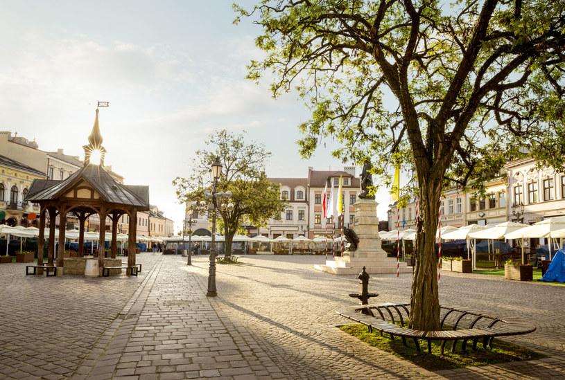 Latem wokół rzeszowskiego rynku otwiera się mnóstwo kawiarnianych ogródków /123RF/PICSEL