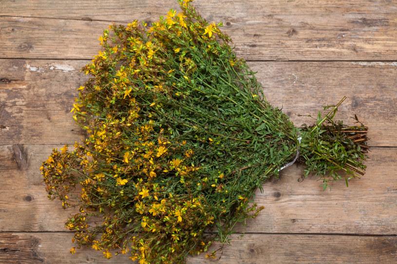 Latem zbieraj kwiaty, zimą pij napar /123RF/PICSEL