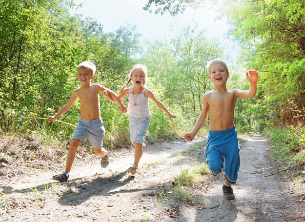 Lato to dobra pora, by wzmocnić układ immunologiczny /- /123RF/PICSEL