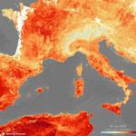 Lato w Polsce będzie trwało pół roku. Szokujące badania naukowców