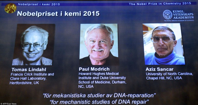 Laureaci tegorocznej Nagrody Nobla w dziedzinie chemii /AFP /East News