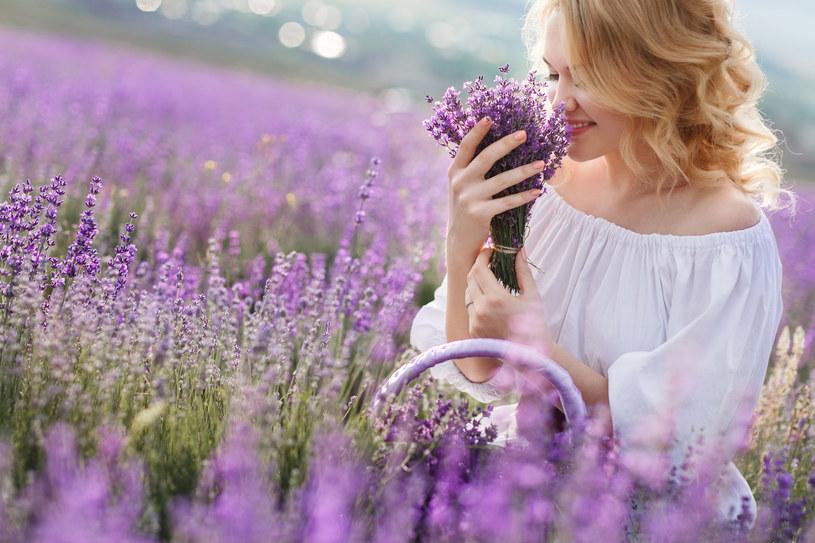 Lawenda nie tylko pięknie pachnie, ale pomoże ci również na problemy z cerą /123RF/PICSEL